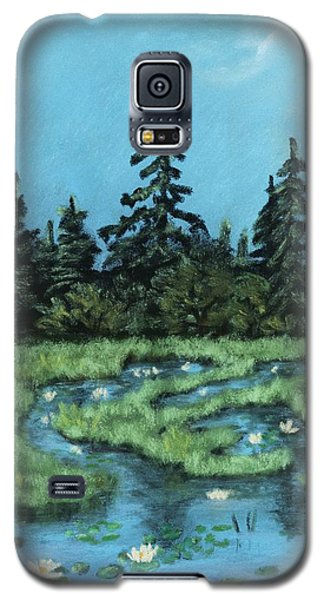 Galaxy S5 Case featuring the painting Wetland - Algonquin Park by Anastasiya Malakhova