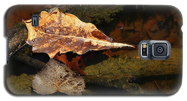 Wetland Spring 042918 Galaxy S5 Case