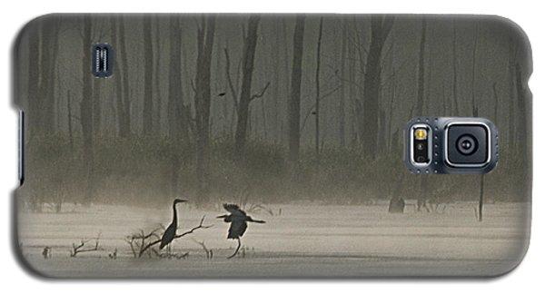 Wetlands Morning Galaxy S5 Case