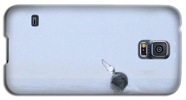 Whale Galaxy S5 Case