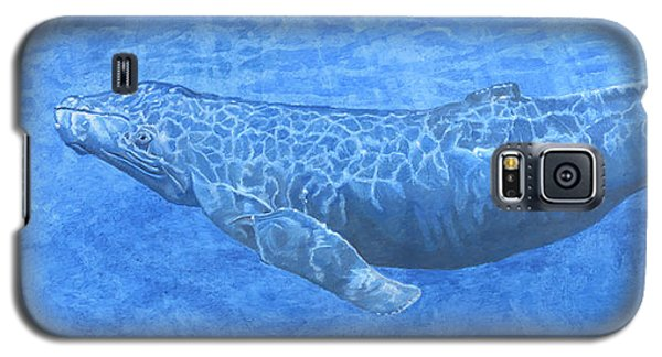 Whale In Surface Light Galaxy S5 Case