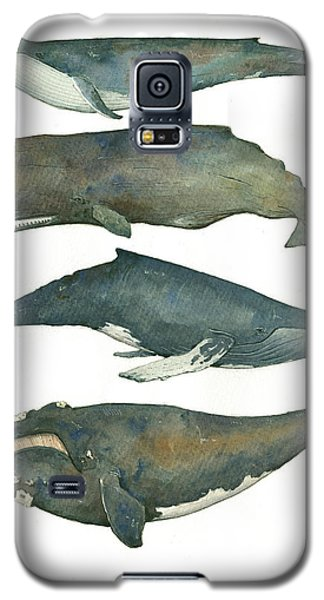Whale Galaxy S5 Case - Whales Poster by Juan Bosco
