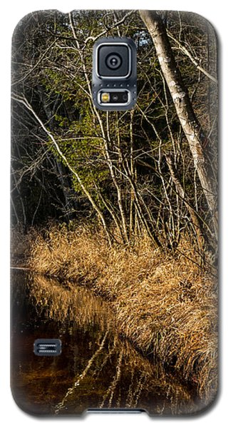 Wharton Forest Fall Galaxy S5 Case