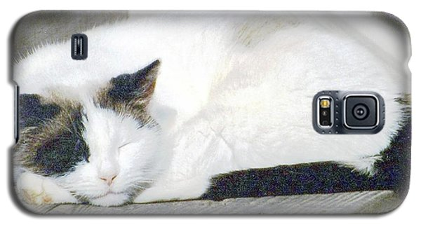 What Do Cats Dream Of #2 Galaxy S5 Case