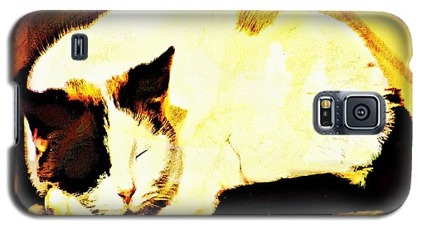 What Do Cats Dream Of Galaxy S5 Case
