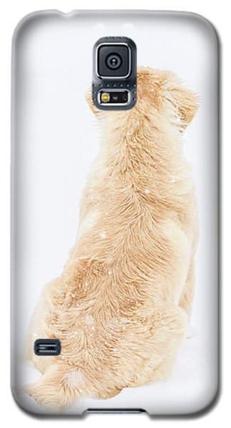 What Do You See? Galaxy S5 Case