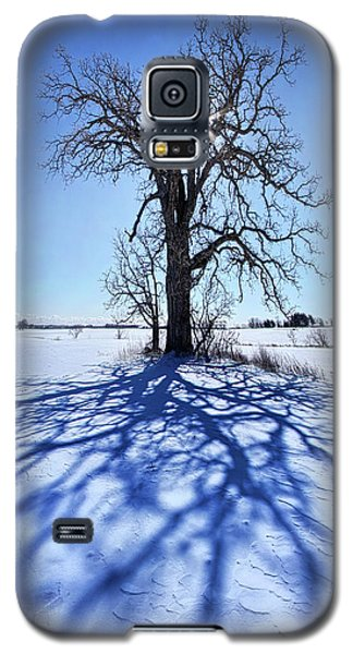 Galaxy S5 Case featuring the photograph What I Am, What I Was, What I Will Be by Phil Koch