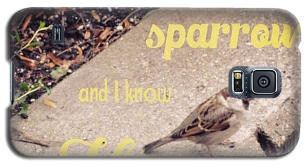 Design Galaxy S5 Case - What Is The Price Of Two Sparrows-one by LIFT Women's Ministry designs --by Julie Hurttgam