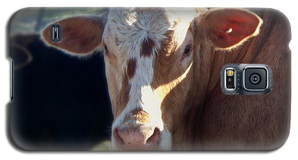 Galaxy S5 Case featuring the photograph What You Lookin' At by Betty Northcutt