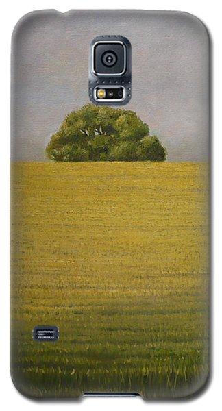 Wheat Field Galaxy S5 Case