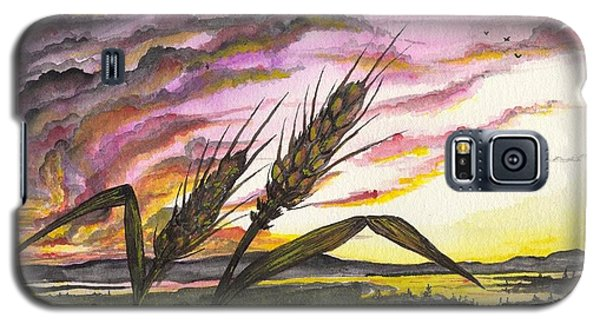 Wheat Field Galaxy S5 Case by Darren Cannell