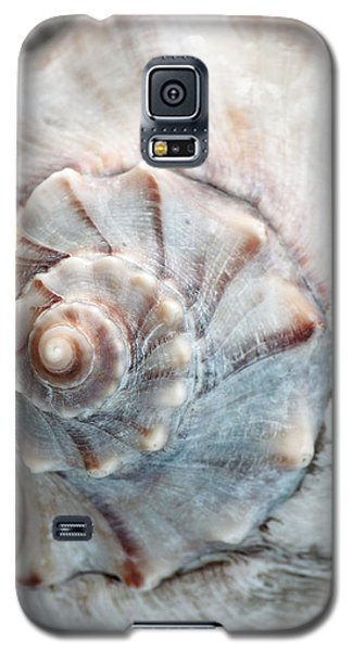Whelk Galaxy S5 Case