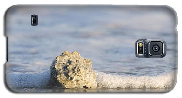 Galaxy S5 Case featuring the photograph Whelk In Surf Two by Bob Decker