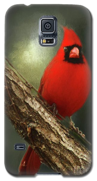 Galaxy S5 Case featuring the photograph When Angels Are Near by Darren Fisher