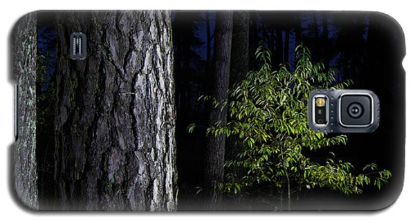 Galaxy S5 Case featuring the photograph When First Leaves Start To Fall by Dirk Ercken