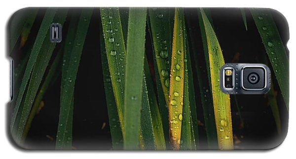 When It Rains Galaxy S5 Case