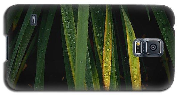 When It Rains Galaxy S5 Case