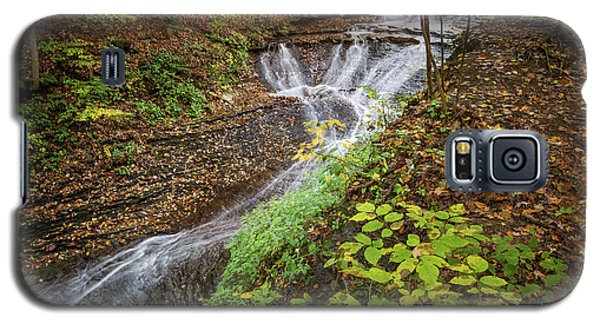 Galaxy S5 Case featuring the photograph When The Leaves Fall by Dale Kincaid