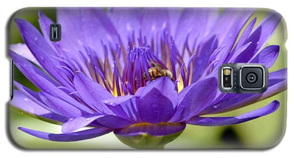 When The Lily Blooms Galaxy S5 Case