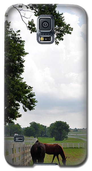 When The Winds Begin To Sing Galaxy S5 Case by Jan Amiss Photography