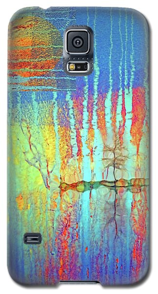 Galaxy S5 Case featuring the photograph Where Have All The Trees Gone? by Tara Turner