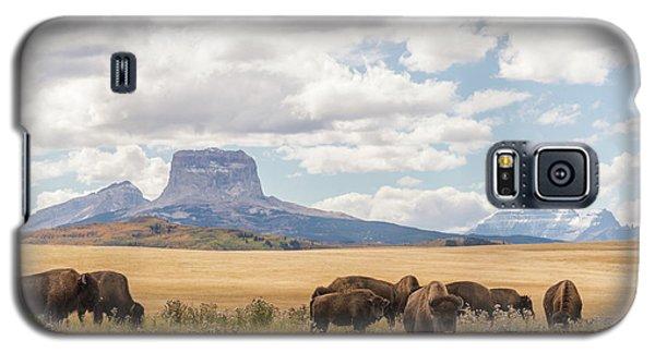 Where The Buffalo Roam Galaxy S5 Case by Alex Lapidus