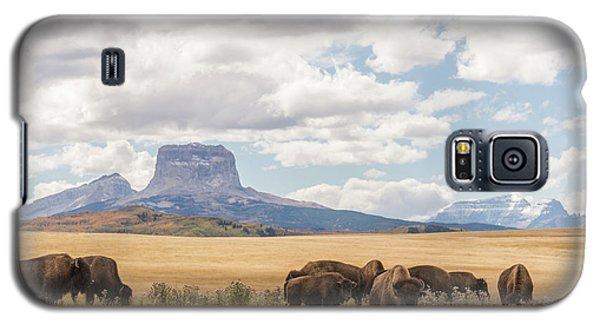 Where The Buffalo Roam Galaxy S5 Case