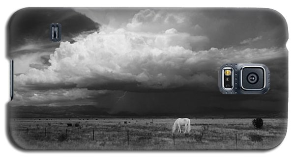 Where The Wild Horses Are Galaxy S5 Case