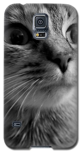 Whered Ya Get Those Peepers Galaxy S5 Case