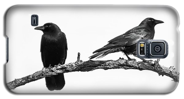 Which Way Two Black Crows On White Square Galaxy S5 Case