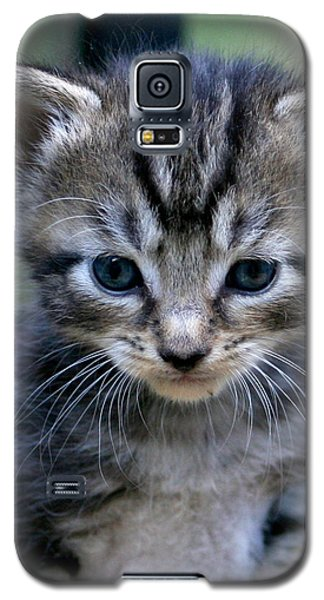 Whiskers Galaxy S5 Case