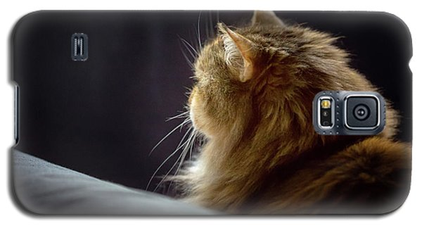 Galaxy S5 Case featuring the photograph Whiskers In The Morning Light by Debby Herold