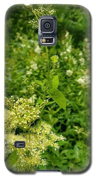 Whisper Galaxy S5 Case
