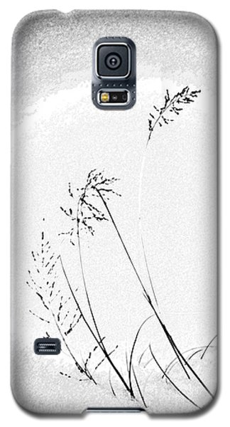 Whisper Galaxy S5 Case by Vicki Pelham