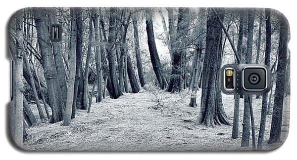 Whispering Forest Galaxy S5 Case by Wayne Sherriff