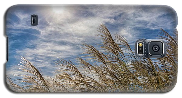 Whispering Grasses Galaxy S5 Case