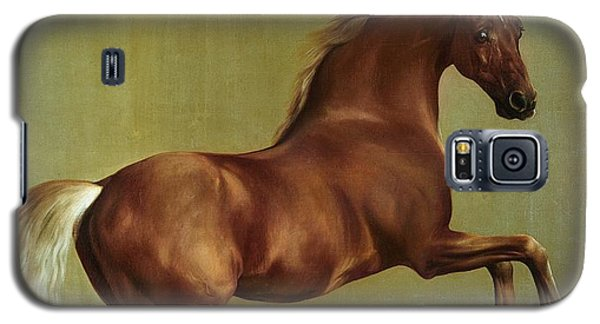 Whistlejacket Galaxy S5 Case by George Stubbs