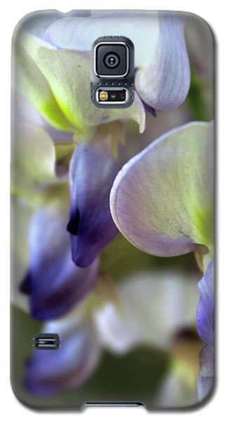 Wisteria White And Purple Galaxy S5 Case