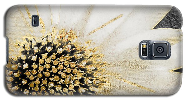 White And Gold Daisy Galaxy S5 Case by Mindy Sommers