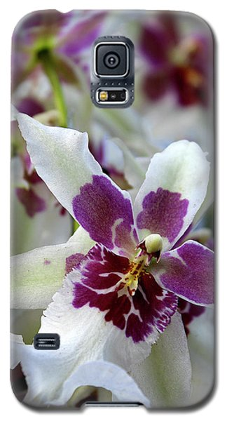 Purple And White Orchid Galaxy S5 Case