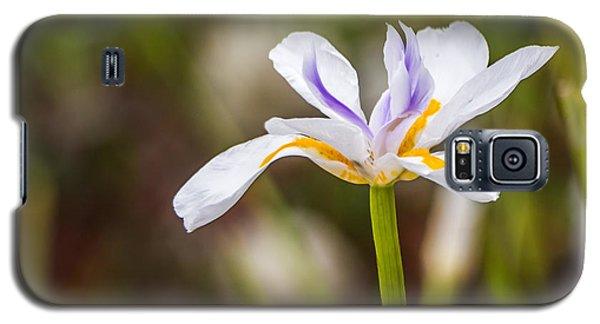 White Beardless Iris Galaxy S5 Case