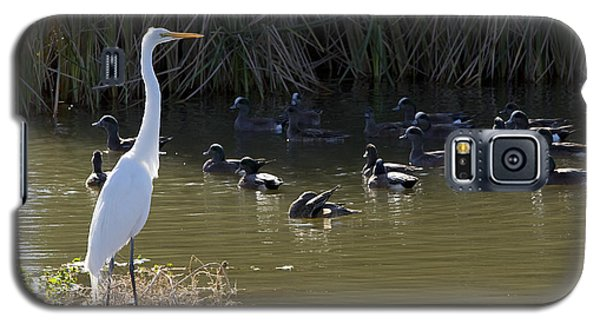 Galaxy S5 Case featuring the photograph White Beauty by Phyllis Denton
