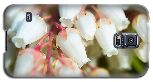White Bells Galaxy S5 Case