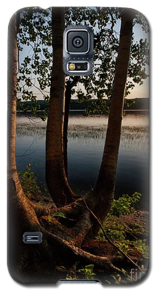 Galaxy S5 Case featuring the photograph White Birch And Kennebec River At Sunset, So.gardiner Me #8360-63 by John Bald