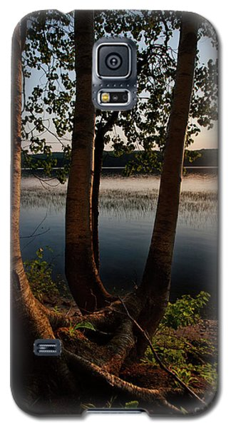 White Birch And Kennebec River At Sunset, South Gardiner, Maine  Galaxy S5 Case