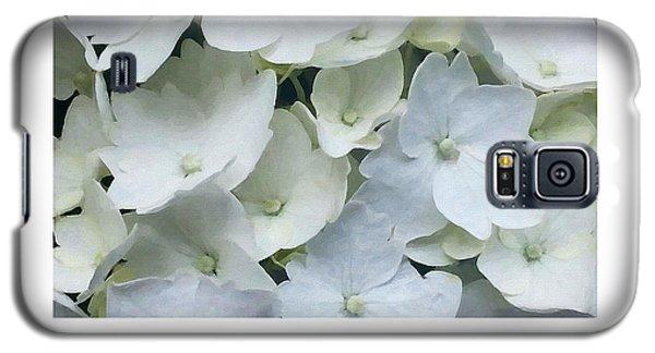 White Blossom Galaxy S5 Case