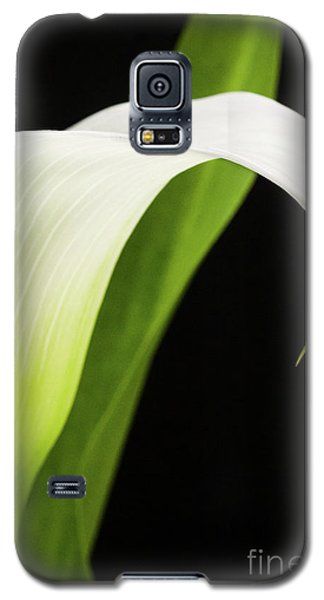 Galaxy S5 Case featuring the photograph White Calla Lily  -90759 by John Bald
