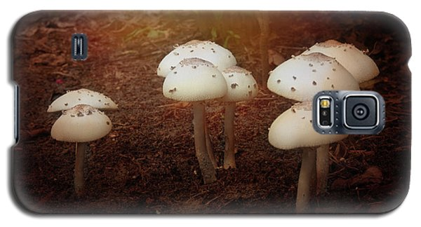White Cap Mushrooms Galaxy S5 Case by Carolyn Dalessandro