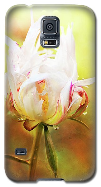 White Chinese Peony Laden With Raindrops Galaxy S5 Case