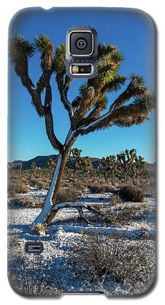 White Christmas 2016 Galaxy S5 Case